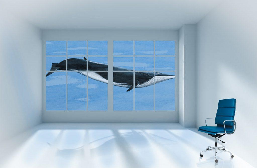 Whale Aquarium Room Office Chair - BiancavanDijk / Pixabay